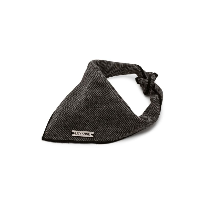 grey dog bandana 1